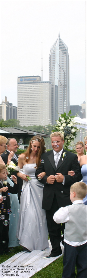 Wedding Ceremony Grant Park Chicago